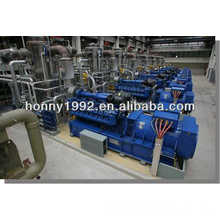 MWM Germany Gas Engine Biogaz Power Plant Turnkey