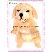 Full Body Puppet brinquedo Retriever pelúcia (XDT-0129)