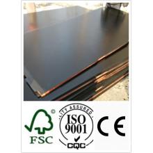 1250 * 2500mm Tamaño Negro Madera contrachapada de primera calidad