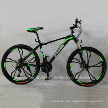 Hot Sale MTB Aluminum Alloy Mountain Bike (FP-MTB-A078)