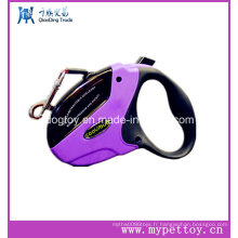 Dog Leash Pet Collor Transparency Window Style