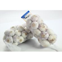 2015 Crop Fresh Single Clove Garlic/Single-seed garlic from yunnan