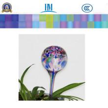 Os bulbos de vidro molhando da planta nova dos globos da água / rega à moda da planta