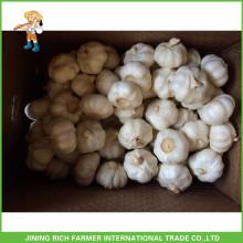 Свежий новый сорт чеснока Чистый белый чеснок 4,5 см, 5,0 см, 5,5 см и выше