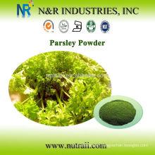 Pure Parsley powder 60-80mesh, 100mesh, 200mesh