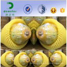China Manufacturer Customized EPE Fruit Protective and Cushioning Net for Pawpaw Packing
