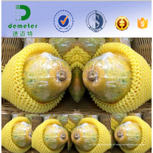 O fabricante de China personalizou a rede protetora e amortecendo da fruta de EPE para a embalagem do Pawpaw