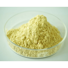 Ginseng Extract High Quality