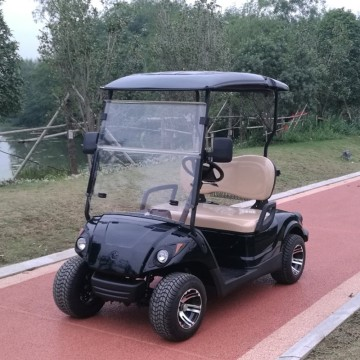 Hot Sale electric mini golf cart