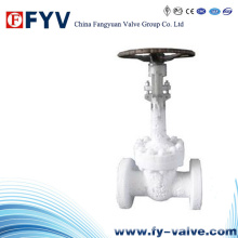 Manual ANSI Cast Steel Cryogenic Gate Valve