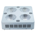 Hydroponika 300W COB Warzywa LED Grow Light