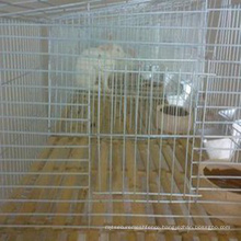 China professional cheap galvanized welded wire chicken cages