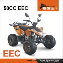 49cc Kinder mit Mini Quad e-Start