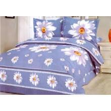 Ensembles de literie colorée / drap de lit
