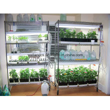 Chrome Adjustable Heavy Duty Greenhouse Storage Wire Rack