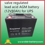 Valve Regulated Lead Acid AGM Battery (12V80Ah) for UPS, Telecom, Electrical Utilities