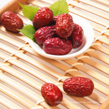 Jujube chinois Prix le plus bas Spine Date Seeds
