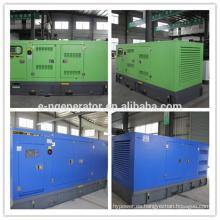 Generador diesel de recinto resistente a la intemperie