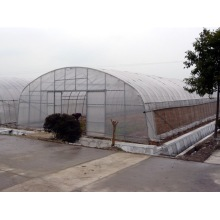 Skyplant Tunnel seed greenhouse for vegetable