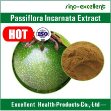 High Quality Passion Fruit Extract, Passion Fruit Extract Powder, Passiflora Caerulea L.