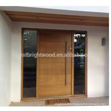 Contemporary Modern Style Exterior Solid Wooden Front Door Design