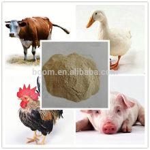 animal feed grade protein yeast