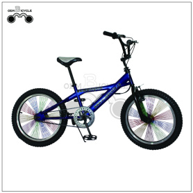20 inch Hi-ten Steel Freestyle Bike