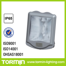 Glare free flood light