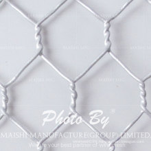 Cold Dipped Galvanized Hexagonal Wire Mesh