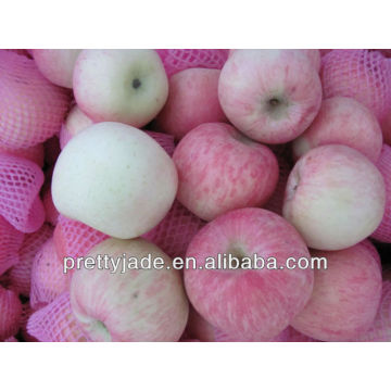 shandong origin fresh fuji apple