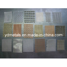 Stainless Steel Wire Mesh/ Galvanized Wire Mesh