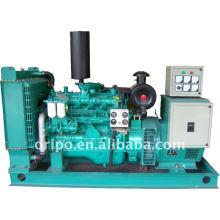 Générateur de puissance diesel yuchai de la marque chinoise avec un service de maintenance mondial
