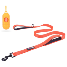Training Walking Dog  Lead