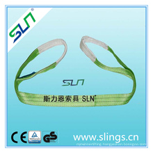 2tx1m 100% Polyester Webbing Sling with Sf 6: 1