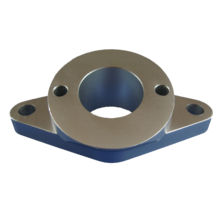 Forging Flange with Stainless Steel for Auto (DR133)