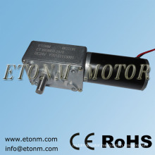 DC 24V 9rpm 120Kg.cm High-torque worm reducer geared motor Double shaft Gearbox motor