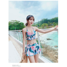 Split Skirt Style Gathered to Cover Belly Slim Swimsuit