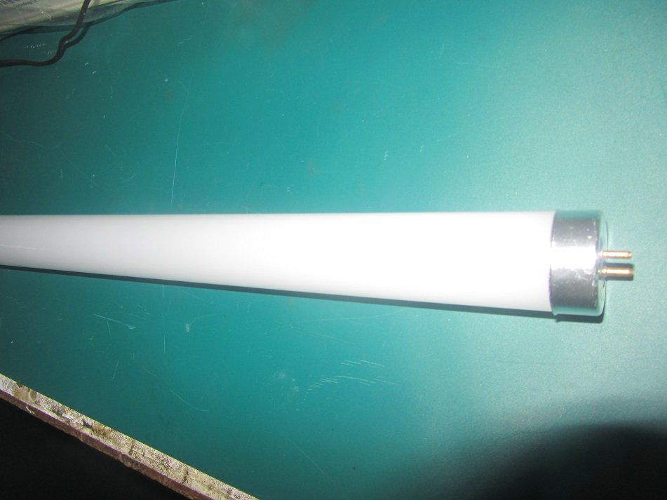 T10 LED Tube Light Warm White
