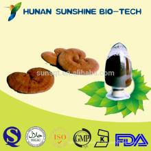 Fornecedor Orgânico de Ervas Imune Booster Medicamentos Reishi Mushroom Extract Lingzhi PE