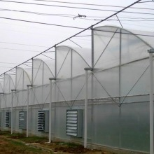 Cheapest Price for Pc Sheet Covering  Greenhouse Multi-Span Hydroponic Tunnel Film Greenhouse supply to France Exporter