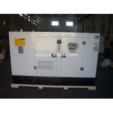 Tipo silencioso 12.5kva gerador diesel