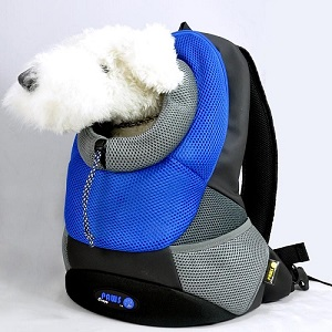 Pet Backpack with model