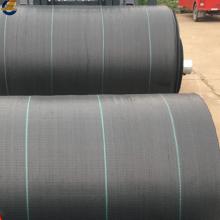 PE Laminated Non Woven Fabric