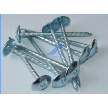 Screw Shank Stainless Steel Roofing Nails
