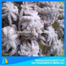La pieuvre de bébé frais congelée de haute qualité la moins chère