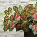 Украшение искусственных горшечных растений