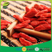 EU hot sell milagre goji berries