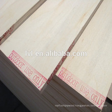 Birch faced poplar core plywood for Russia market