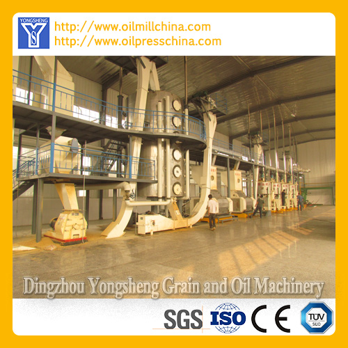 Groundnut Oil Equipment