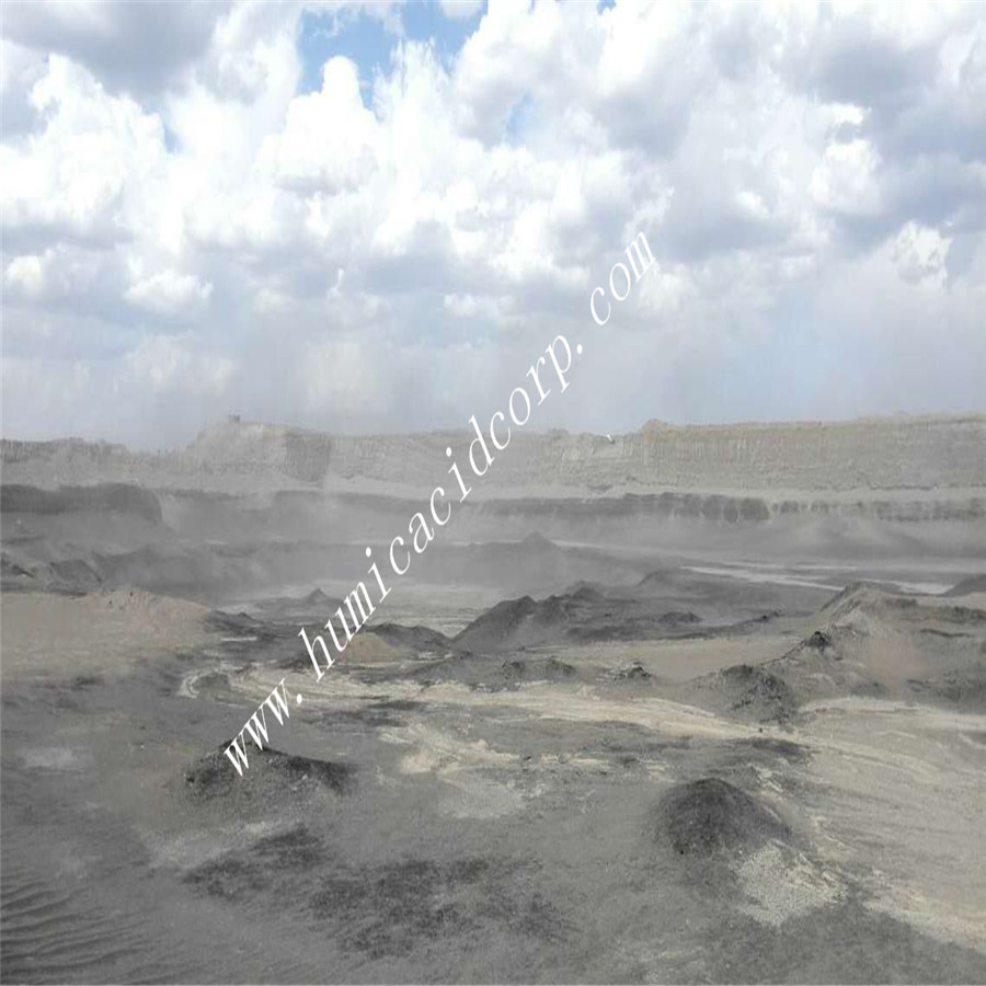 Potassium humate with fulvic acid material